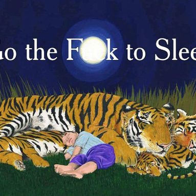 Go The Fuck To Sleep Kids Book